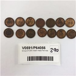 Group of USA Indian Head Pennies