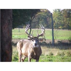 "Two Day Whitetail Buck Hunt for One Hunter and One Observer 160"" to 170"""