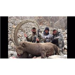 Five to Six Day Hunt for Mid Asian Ibex for One or Two Hunters
