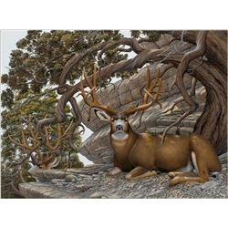 "30"" x 40"" framed wildlife print"