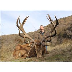 Three Day Hunt for Red Stag for One Hunter and One Non-Hunter