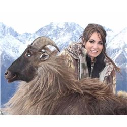 1 Hunter 5 Days New Zealand Tahr Hunt with Awatere Safaris