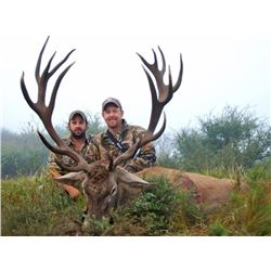 2 Hunters, 7 Days, Argentina big game with TGB Outfitters