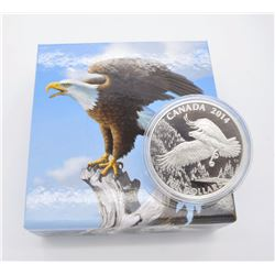 100$ For 100$ Eagle
