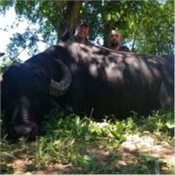 5 Days Water Buffalo Hunt in Argentina for 1 Hunter.