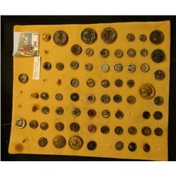 Large Collection of buttons, which 'Doc' sold for between $3 and $5 each. (65 pcs.)