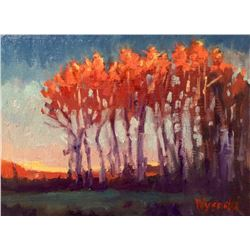 """Poplar Sunset"" by Stephen Wysocki"