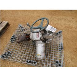 "LIMITORQUE 2"" VALVE AM30561 (UTILITY COMPANY OWNED)"