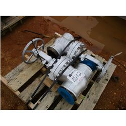 "(2) WCB 6"" VALVE (UTILITY COMPANY OWNED)"
