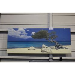 FRAMED PRINT, TREE ON THE BEACH