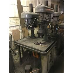 "17"" ROCKWELL-DELTA 2-Spindle Gang Drill Press"