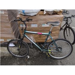 "21 Speed ""Triumph"" mountain bike"