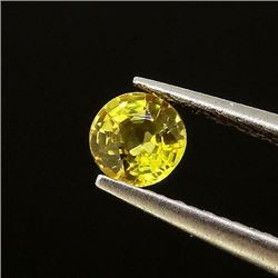 Natural Canary Yellow Sapphire 0.50 Cts - VVS