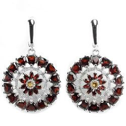 Natural Garnet & Citrine Earring