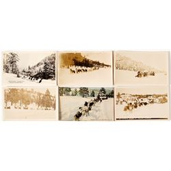 Six Postcards of Dog Sleds Truckee