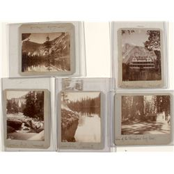 Early Yosemite Photographs