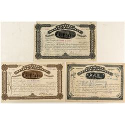 Three Different Leadville Mining Stocks Signed by J.P. Whitney