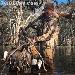 3-Day Duck Hunt for Two Hunters in Australia - Includes Taxidermy Credit