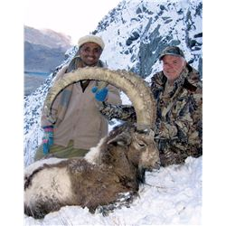 7-Day Himalayan Ibex Hunt for One Hunter in Pakistan - Includes Trophy Fee