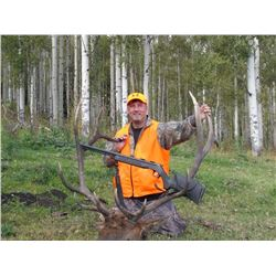 5-Day Rocky Mountain Elk & Black Bear Hunt for One Hunter in Western Colorado - Includes Trophy Fees