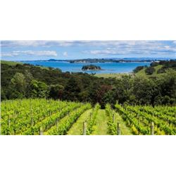4-Day New Zealand Touring Package for Two - Includes Round-Trip Airfare