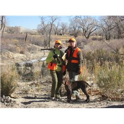 2-Day/3-Night Upland Wingshooting for Two Hunters in Utah