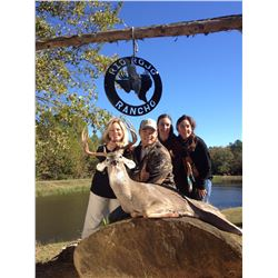 3-Day/4-Night Whitetail Deer Hunt for One Hunter and One Non-Hunter in Texas - Includes Trophy Fee