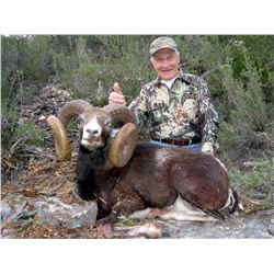 4-Day European Fallow Deer OR Iberian Mouflon Sheep Hunt for Two Hunters in Spain - Includes Trophy