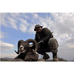 7-Day Mouflon Hunt for One Hunter and One Non-Hunter in Macedonia - Includes Trophy Fee