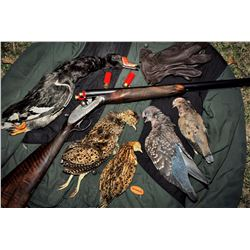 5-Day Five-Feathers Mixed Bag Hunt for Four Hunters in Argentina