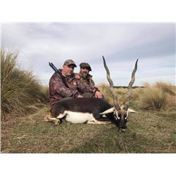 7-Day Buffalo, Blackbuck and Axis Deer Hunt for Two Hunters in Argentina - Includes Trophy Fees