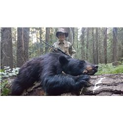 5-Day Black Bear Hunt for Two Hunters in Idaho - Includes Trophy Fees