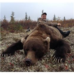 14-day Alaska Grizzly Bear Hunt for One Hunter