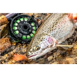 6-day Alaska Salmon, Trout, Char, Pike and Grayling Fishing Trip for Two Anglers