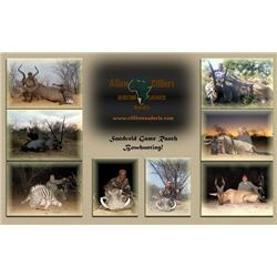10-day Namibia Plains Game Hunt for One Hunter and One Observer
