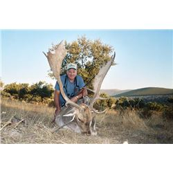 5-day Spain Fallow Deer Hunt for One Hunter and One Observer
