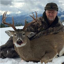 5-day Idaho Northwestern White-tailed Deer Hunt for One Hunter and One Observer