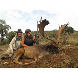 5-day Red Deer, Fallow Deer, and Roe Deer Hunt for Two Hunters in Spain