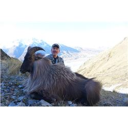 5-day New Zealand Himalayan Tahr Hunt for Two Hunters and Two Observers