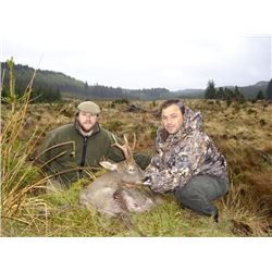 5-day Trophy European Roe Deer Hunt for One Hunter and One Observer in Spain