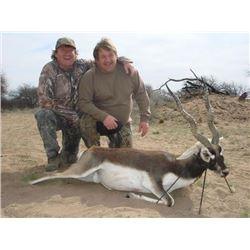 4-day Argentina Blackbuck and Hybrid Sheep Hunt For Two Hunters