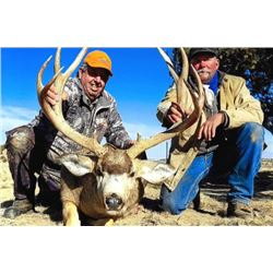 5-day Eastern Colorado White-tailed Deer or Mule Deer Hunt for One Hunter