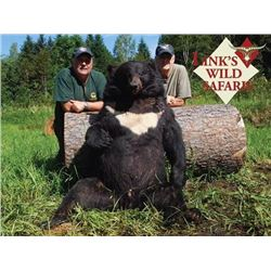 10-day Russia Asian Black Bear Hunt for One Hunter