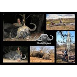 10-day Mozambique Cape Buffalo and Crocodile Hunt for One Hunter and One Observer