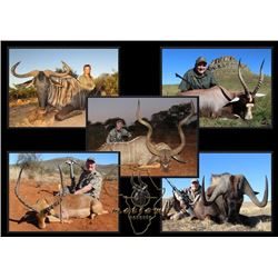 8-day South Africa Plains Game Hunt for Two Hunters and Two Observers