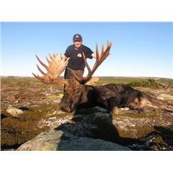 6-day Newfoundland Eastern Canada Moose and Black Bear Hunt for One Hunter