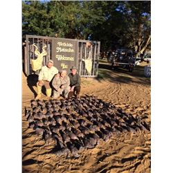 7-day South Africa Mixed-bag Bird Hunt for Four Hunters