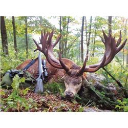 4-day Quebec Red Stag Hunt up to 450 SCI for One Hunter