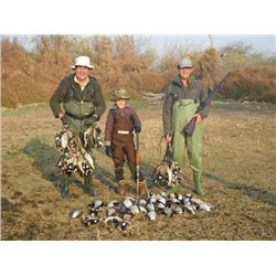 5-day Argentina Duck, Dove, Pigeon and Partridge Hunt for Eight Hunters