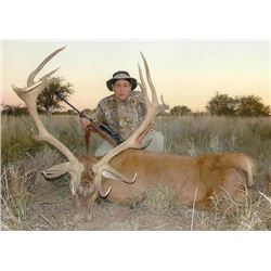 4-day Argentina Free-Ranging Red Deer, Blackbuck and Small Game Hunt for Two Hunters